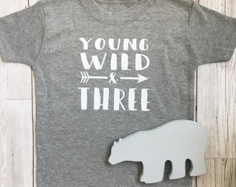 Third birthday tshirt / 3rd top outfit / three / boys / girls