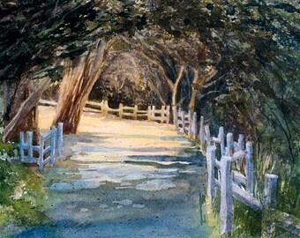 Enlightenment Path, Watercolor Print, Sunlit Path, Pfeiffer Beach, Big Sur, California, Trees