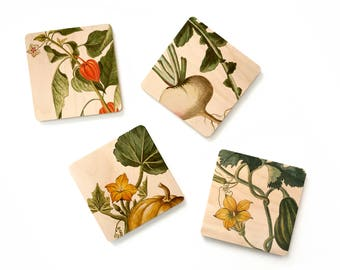 Eco Thanksgiving,Eco Gift,Thanksgiving Hostess Gift,Autumn Harvest Gift,Fall Vegetables Coaster Set,Cottage Housewarming,Wooden Coasters