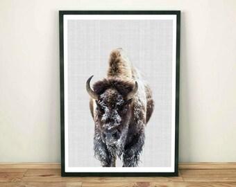Bison Print, Buffalo Print, Bison Printable, Bison Wall Art Print, Nursery Woodlands, Printable Wall Art, Wild Animals Photo, Digital Poster