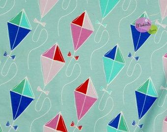 Blaubeerstern Jersey Kite Kite Flying