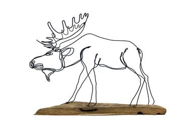 Moose Wire Sculpture, Moose Art, Bull Moose, 570796368