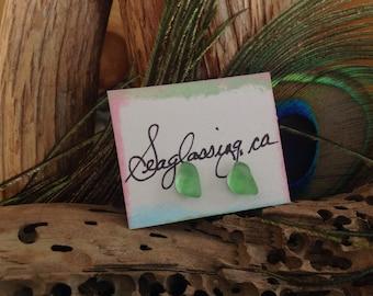 Sea Glass Earrings, green sea glass studs