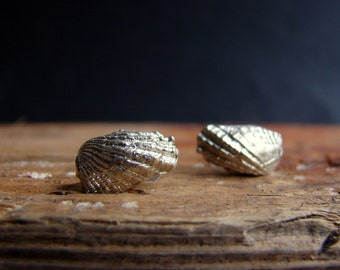 Angel Wings Mermaid Sea Shell Stud Earrings Sterling Silver