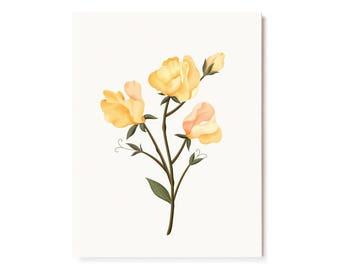 Botanical Scented Card - Sweet Pea