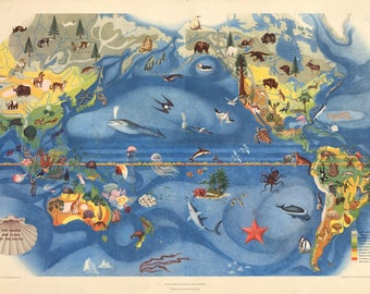 1940 The Fauna and Flora of the Pacific
