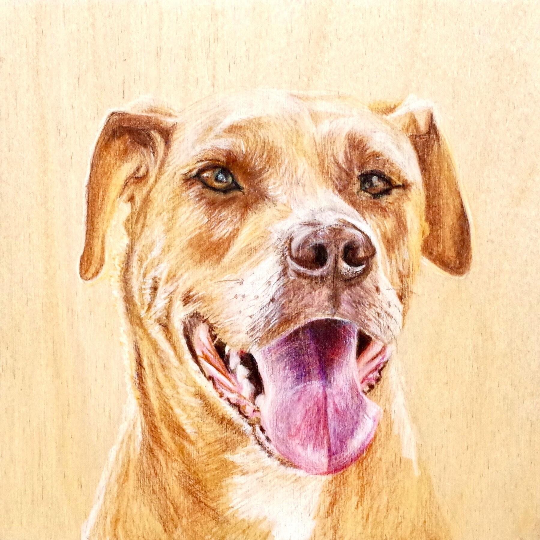 American Pit Bull Terrier Gift / doggywood/ custom pet