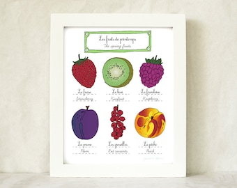 Kitchen Food Art 'Spring Fruits' - 8x10 art print of original illustration - French Retro Kitchen home decor botanical chart