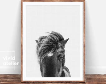 Horse Print, Black and White, Wilderness Wall Art, Horse Photography, Equestrian Art, Horse Photo, Horse Decor, Nursery Art, Printable Art
