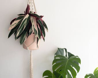 "Macrame Plant Pendant ""NR. 27"" | Handmade Pothanger/Modern macramé"