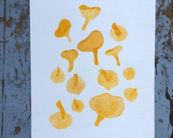 Original Watercolour Chanterelles