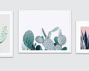 cactus poster, cactus trend, cactus wall art, plants wall art, cactus photography, cactus download, Cactus Modern Print, Cactus Printable Po