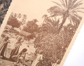 Children Oasis Oued Palm oasis - Africa du Nord-vintage postcard - orientalist photography sepia - antique french 1920's
