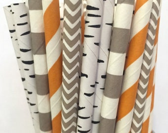 2.85 US Shipping -Woodland Paper Straws- Birch Gray Orange Paper Straws - Cake Pop Sticks - Drinking Straws