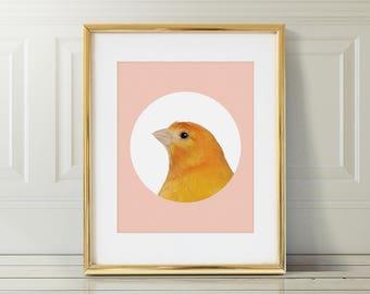 Canary Nursery Art Print   Canary Wall Art   Nursery Printable   Nursery Wall Art   Bird Art Print   Bird Wall Art   Bird Nursery Print  