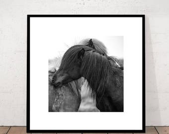 Horse Print, Black and White, BW Print, Close-up Horse,  Back and White Print, Wall art, Modern Photography, Digital Download Wall Art