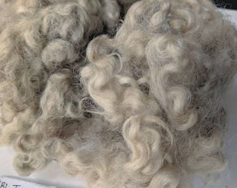 Naturally Dyed Border Leicester Wool Locks - Thistle, Tulips & Black Beans