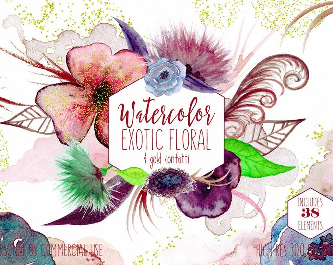 EXOTIC WATERCOLOR FLORAL Clipart Commercial Use Clip Art 38 Unique Watercolour Flowers Feathers & Leaves Blush Pink Gold Confetti Graphics