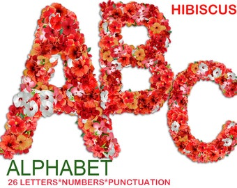 Digital Hibiscus Alphabet, Summer Alphabet, Floral Alphabet, Printable Lettering, Instant Download, #38