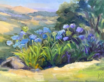Aromas Hills with Agapanthus