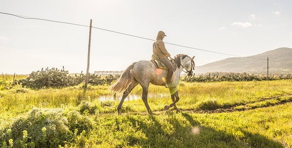 Horseriding in Tarifa,horseprints,equine prints,horses,spain,spanish pictures,
