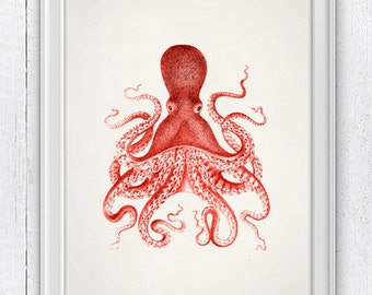 Vintage octopus no.10- Wall decor poster- sea life print- vintage natural history SAS146