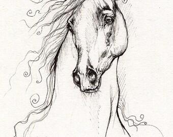 Arabian horse, equine art, equestrian portrait,  original pen drawing