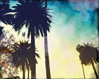 Palm Tree Wall Art, California Palm Tree Home Decor Print, Palm Tree Photography, Surf Art, Retro Beach Wall Art, California Wall Art