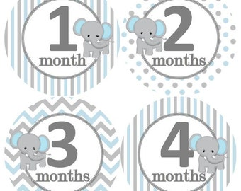 Baby Monthly Milestone Growth Stickers Grey Baby Blue White Elephant Nursery Theme MS259 Baby Boy Shower Gift Baby Photo Prop