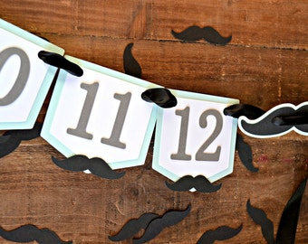 Mustache First Birthday. Little Man First Birthday Photo Banner. Little Man Decor. 12 Month Photo Banner. Mustache Party Decorations.