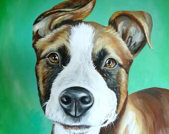 20x20 size canvas custom painted pet portrait size 20x20 statement piece
