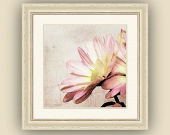 Dreamy Romantic Shabby Cottage Rustic Farmhouse Chic Pink Daisy Flowers Pink Cream Yellow Square Fine Art Photography Print