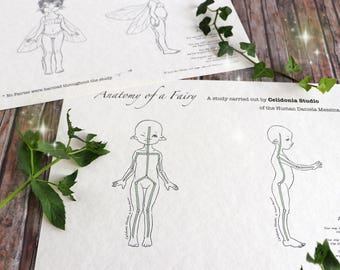 Fairy Pattern reference for ooak Art Dolls - Celidonia's Original Drawings - DIGITAL FILE - JPEG Instant Download