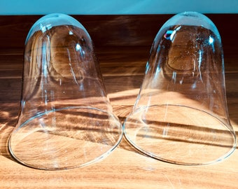 Pair of Glass Bell Jars or Cloches