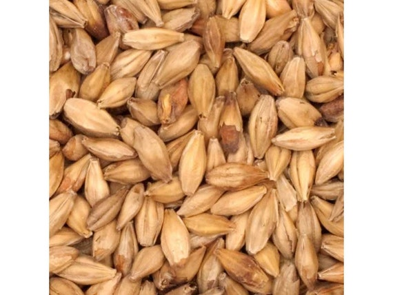 All Natural Raw Aromatic Brewers Grains For Home Beer Brewing 1 Pound