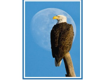 Eagle and Moon Note Card Set