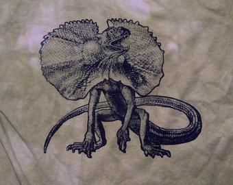 Frillnecked Lizard