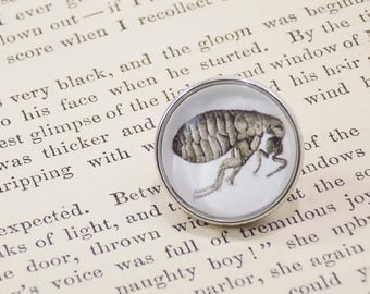 Snap Charm Button - Flea Drawing- Micrographia, Robert Hooke, Bugs, Insects, Meme Jewelry, Dank Memes, Vintage, Noosa, Ginger Snaps