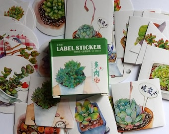 Succulent Stickers. Pack of 40. Plant Stickers. Planners, Scrapbook, Journal, sticker flakes, paper stickers.