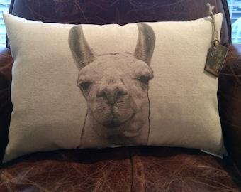 Llama Pillow / Clhoe