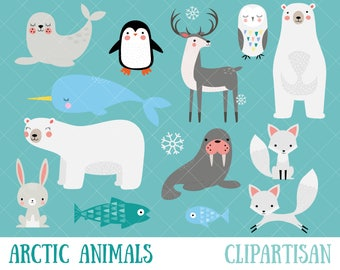 Arctic Animals Clipart | Winter Animals Clip Art | Polar Bear | Penguin | Seal | Walrus | Hare | Fox | Narwhal | Reindeer | Snowy Owl