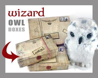 Wizard Owl Boxes, Wizard party, christmas, wizard party favor, owl post, wizard birthday, wizard party, decoration, birthday party, supplies