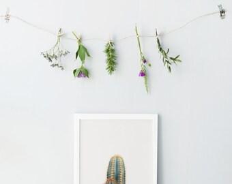 Impression d'art de cactus - Cactus d'impression photo - décoration minimaliste - cactus minimaliste print - succulente photo impression - Cactus imprimable d'art