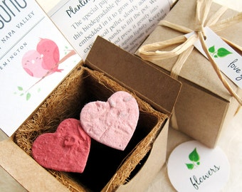 100 Seed Planting Wedding Favor Boxes with Plantable Flower Pots and Seed Paper Confetti Hearts - Custom Favor Tags - Seed Paper Birds