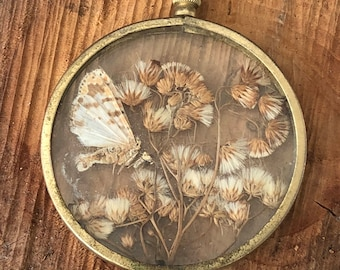 Large Victorian pressed butterfly/flower pendant