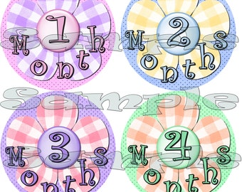 Month to Month Stickers set Baby Shower gift Monthly stickers Milestone infant month stickers One piece Baby Girl pink purple flowers decals