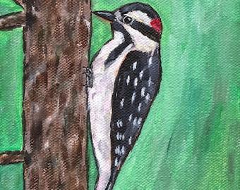 ORIGINAL PAINTING Woodpecker, Acrylic on Canvas, Small Miniature 5x7, Bird Songbird Nature Animal Wildlife