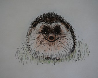 Hedgehog art, ink and pencil drawing, original artist, happy character, cute animal