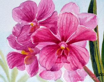 Pink Orchids Painting Tropical Flowers Original Watercolor Art by Janet Zeh