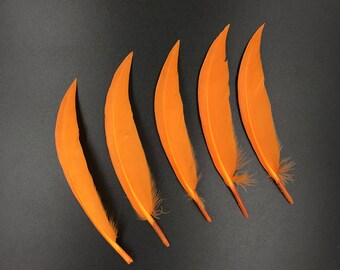 Real Goose Feathers - For Sale Orange Dyeing Natural Bulk Feathers,Cosplay Feathers,Costume Accessories,Hair Accessories Plumes 4-6 Inches